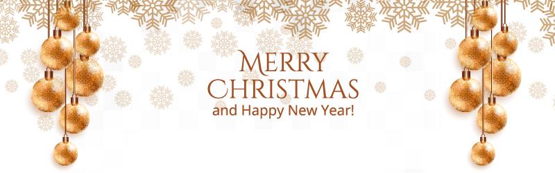 Merry Christmas and Happy New Year 2020 wünscht Ihnen Procura Liesel Rehnelt